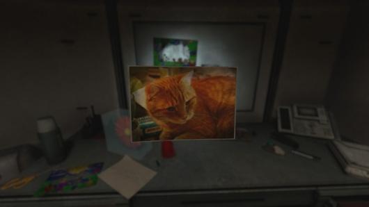 Ce n'est certes pas un chien, ni même un chat, mais la photo d'un chat.