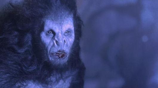 Dracula en loup-garou